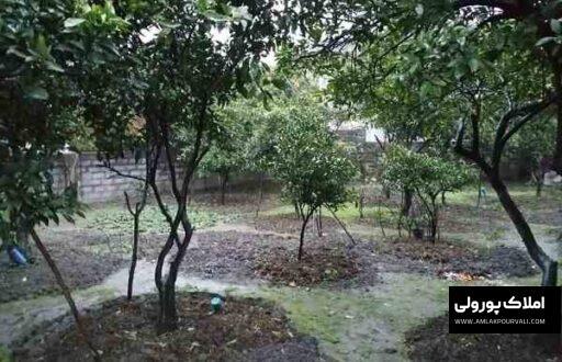 قیمت ویلا باغ در نوشهر