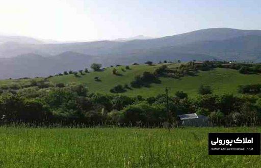 قیمت زمین مرزن آباد