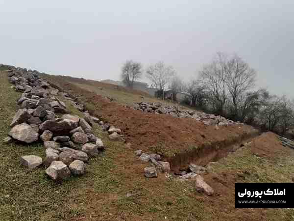 قیمت زمین دلیر الیت مرزن آباد