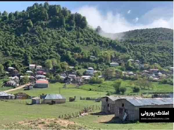 قیمت زمین باندر مرزن آباد
